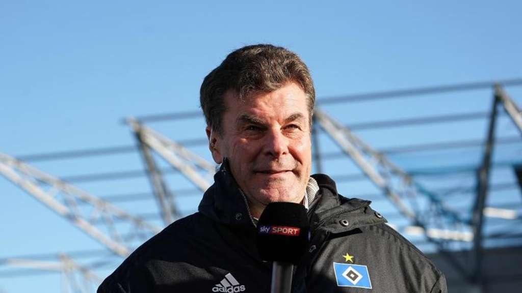 Der Hamburger Trainer Dieter Hecking im Fernsehinterview. Foto: Hasan Bratic/Archivbild